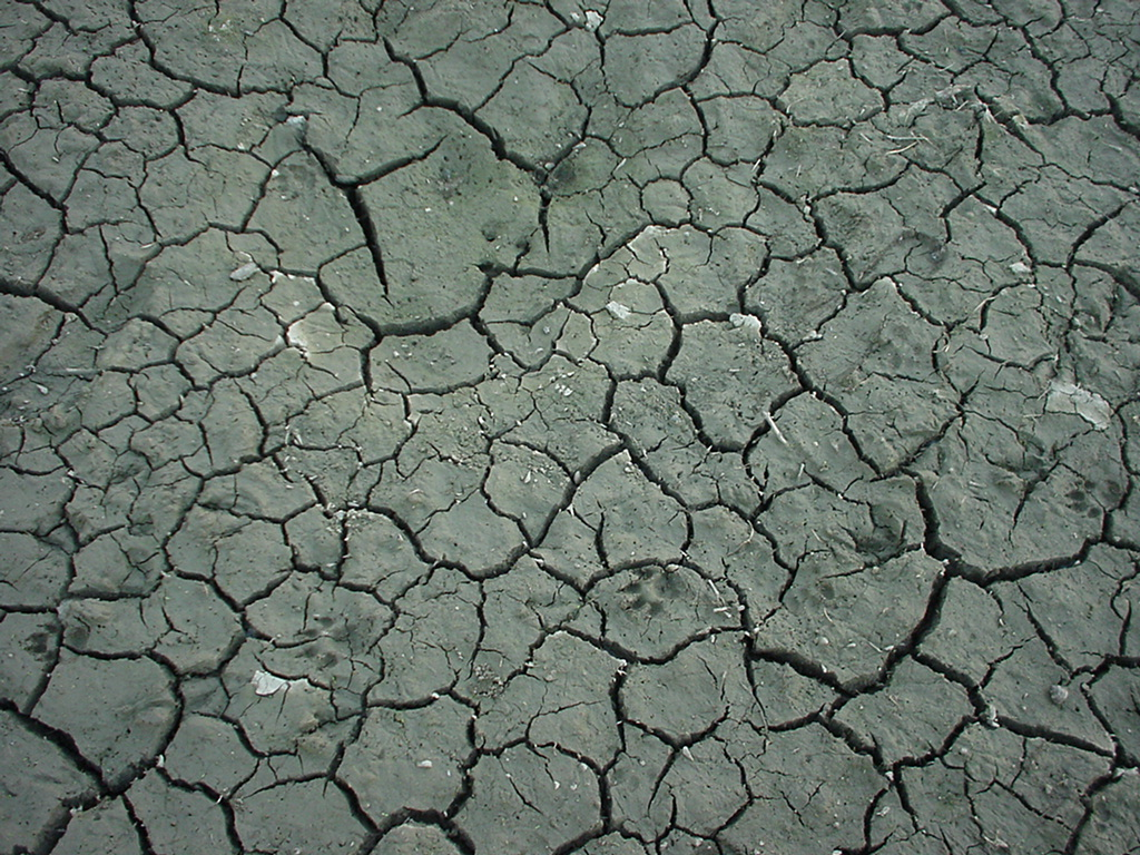 The Easy Way To Use Texture Cracks Photoshop | For Your ...
