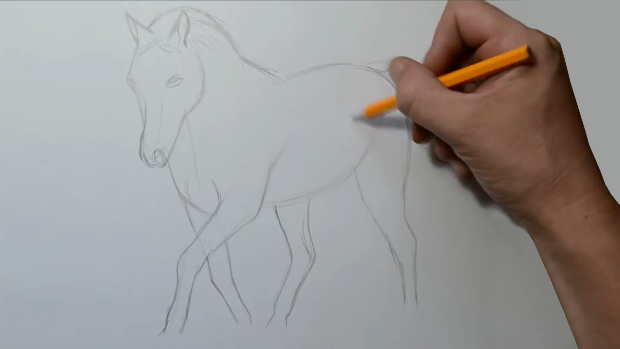 How To Draw A Horse Step By Step 1