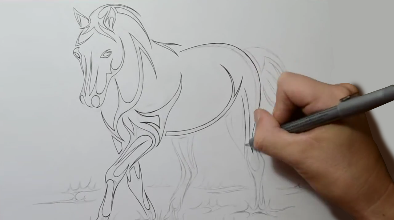 How To Draw A Horse Step By Step 3